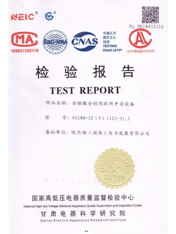 0JLRM-12(F)/125-31.5检验报告-1