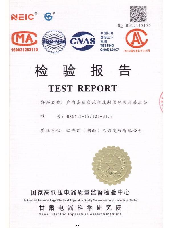 HXGN□-12/125-31.5检验报告-1
