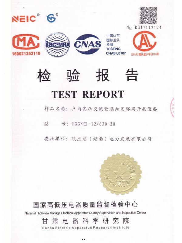 HXGN□-12/630-20检验报告-1