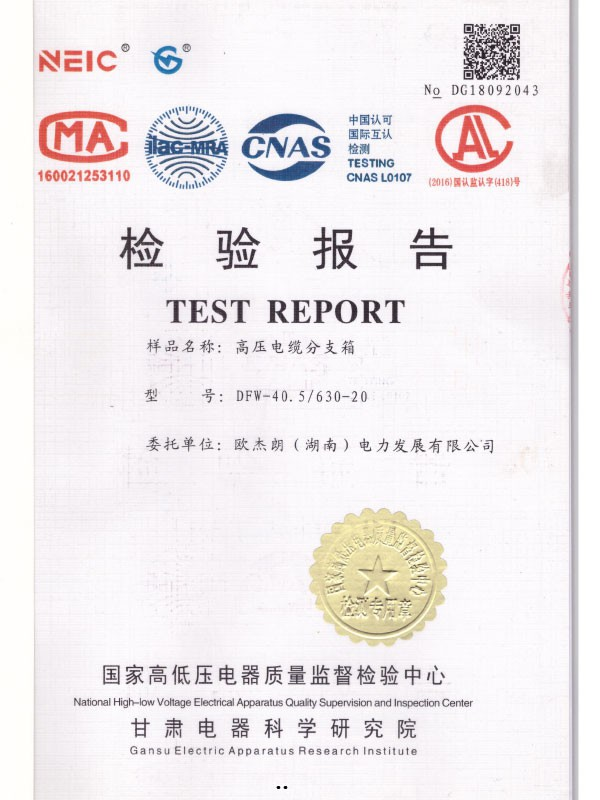 DFW-40.5/630-20检验报告-1